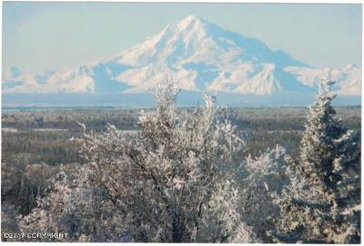 Kenai Residential Lots & Land For Sale: Tr 21C Overlook Court