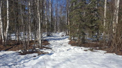 Willow AK Residential Lots & Land For Sale: $19,900