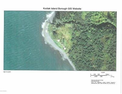 1c - Kodiak Island Borough Single Family Home For Sale: Kizhuyak Bay