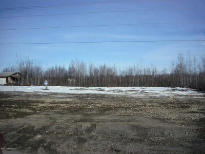 Big Lake Residential Lots & Land For Sale: 13793 Big Lake Road
