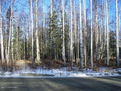 Wasilla Residential Lots & Land For Sale: 4607 Big Rock Drive