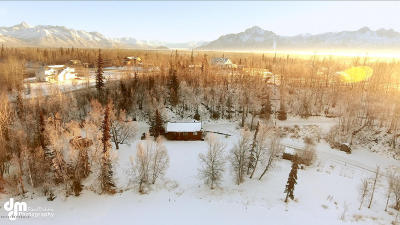 Wasilla Single Family Home For Sale: 6535 E Palmer-Wasilla Highway