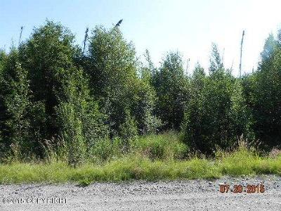 Big Lake Residential Lots & Land For Sale: 304 Ashley Road