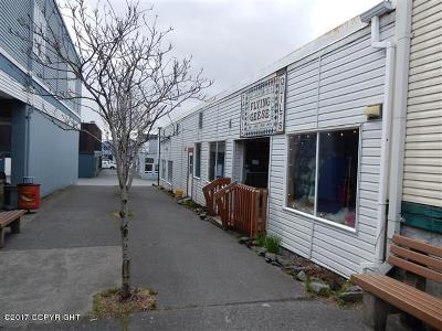 Kodiak Commercial For Sale: 202 Center Avenue