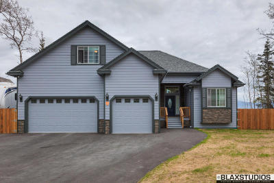Wasilla Single Family Home For Sale: 6730 Leckwold Drive
