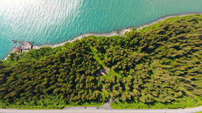 1b - Kenai Peninsula Borough Residential Lots & Land For Sale: 1121 Nash Road