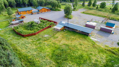 Nikiski/North Kenai Single Family Home For Sale: 45350 Dividend Street