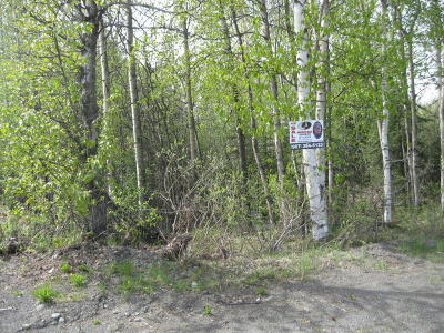 Residential Lots & Land For Sale: 35133 Kenai Spur Highway