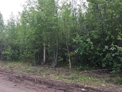Big Lake Residential Lots & Land For Sale: 16098 Huskie Drive