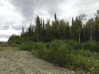 Wasilla Residential Lots & Land For Sale: 8510 Hollywood Road