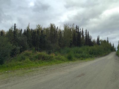 Wasilla Residential Lots & Land For Sale: 4065 Betty J Street