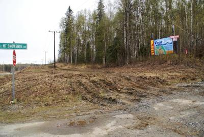 1d - Matanuska Susitna Borough Residential Lots & Land For Sale: 102 Mt Snowshoe Drive