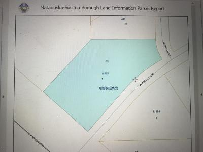 1d - Matanuska Susitna Borough Residential Lots & Land For Sale: 11303 Airolo Drive