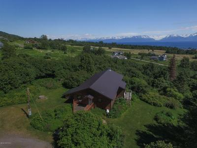 Homer AK Single Family Home For Sale: $599,000