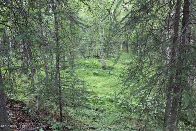 1d - Matanuska Susitna Borough Residential Lots & Land For Sale: 2518 Barnacle Drive