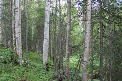 1d - Matanuska Susitna Borough Residential Lots & Land For Sale: 2492 Barnacle Drive