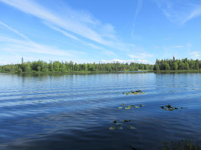 1d - Matanuska Susitna Borough Residential Lots & Land For Sale: Lot 11 Lost Lake