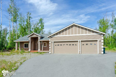 Wasilla Single Family Home For Sale: 4252 S Pinnacle Peak