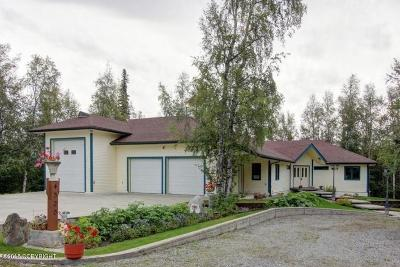 Wasilla Single Family Home For Sale: 850 S Bettina Way