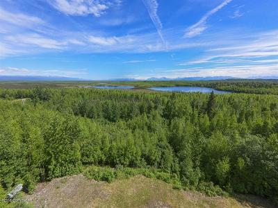 Big Lake AK Single Family Home For Sale: $125,000