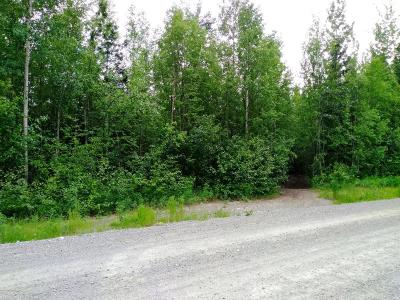 Wasilla Residential Lots & Land For Sale: L16B B1 Satisfied Drive