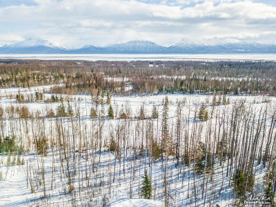 Wasilla Residential Lots & Land For Sale: 7696 Frontier Drive
