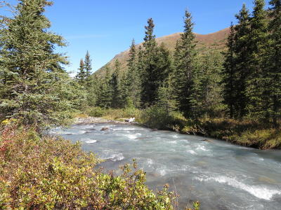 Eagle River Residential Lots & Land For Sale: L7 B2 River Circle