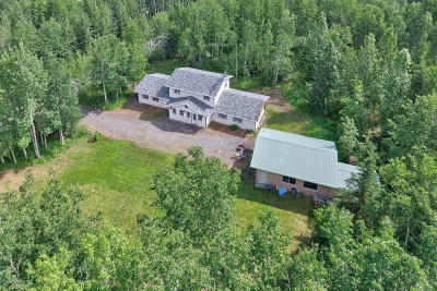 Soldotna Single Family Home For Sale: 34995 Lourdes Avenue