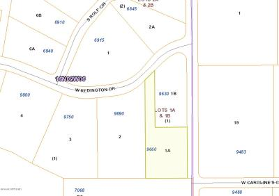 Residential Lots & Land For Sale: 9660 Redington Drive