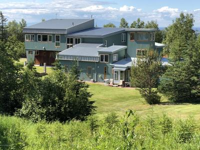 Anchorage Single Family Home For Sale: 9801 Basher Road
