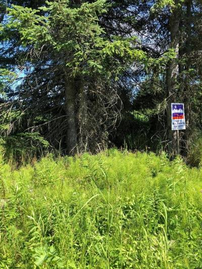 Residential Lots & Land For Sale: Easy Street