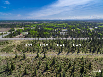 Kenai Residential Lots & Land For Sale: 50123 #41 Buoy Avenue