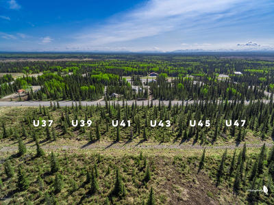 Kenai Residential Lots & Land For Sale: 50123 #43 Buoy Avenue