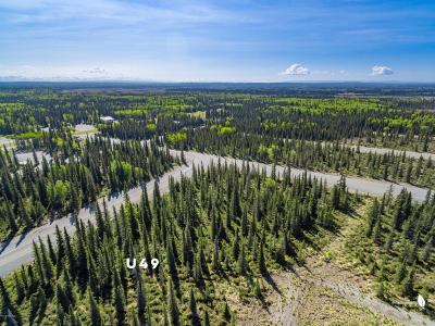 Kenai Residential Lots & Land For Sale: 50123 #49 Buoy Avenue