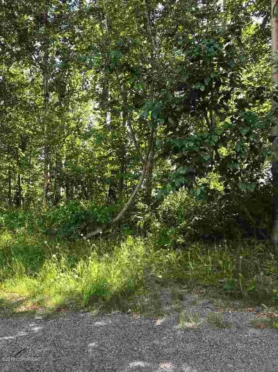 1D - Matanuska Susitna Borough Residential Lots & Land For Sale: 3050 Sparrow Court