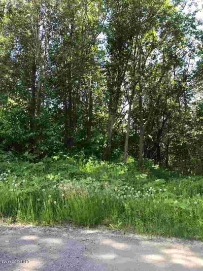 Palmer AK Residential Lots & Land For Sale: $58,000