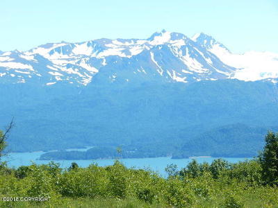 Homer AK Residential Lots & Land For Sale: $125,000