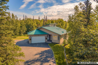 1d - Matanuska Susitna Borough Single Family Home For Sale: 1561 N Landmark Drive