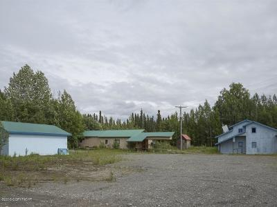 Talkeetna AK Commercial For Sale: $189,900