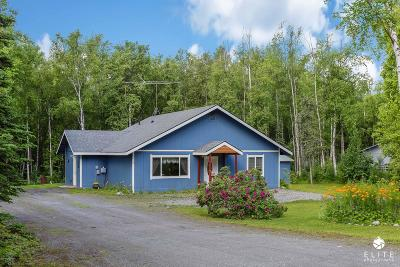 Wasilla Single Family Home For Sale: 3170 S Donovan Drive