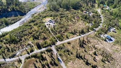 Residential Lots & Land For Sale: 66294 Lothrop Park Drive