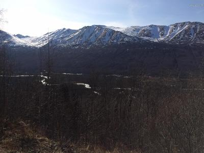Eagle River Residential Lots & Land For Sale: L7 B2 Berryhill Road