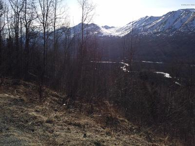 Eagle River Residential Lots & Land For Sale: L8 B2 Berryhill Road