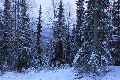 Eagle River Residential Lots & Land For Sale: L2 Mount Magnificent Circle