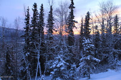 Eagle River Residential Lots & Land For Sale: L4 Mount Magnificent Circle
