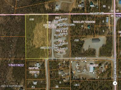Wasilla Residential Lots & Land For Sale: 901 Sue Lane