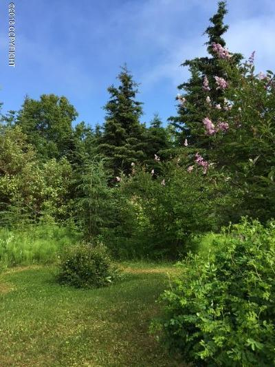 Kenai Residential Lots & Land For Sale: 204 Forest Drive