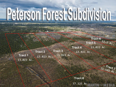 Soldotna Residential Lots & Land For Sale: L1 Peterson Forest
