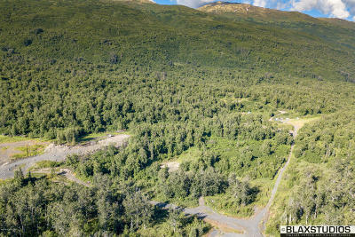 Palmer Residential Lots & Land For Sale: 11751 Back Home Drive