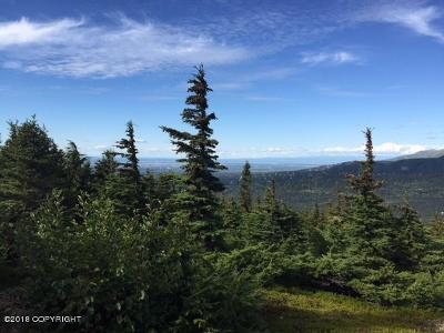 Anchorage Residential Lots & Land For Sale: Tr C Burlwood